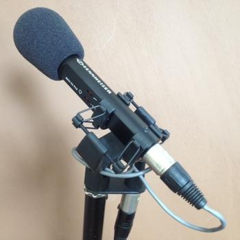 Rent SENNHEISER MKH-50 P48 Super-cardioid Condenser Microphone + MZS 40 shock mount, MZW 41 windscreen