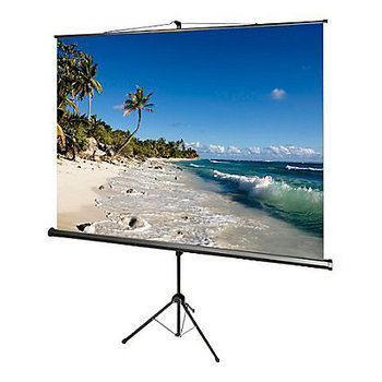 Rent Draper 8' Tripod Screens