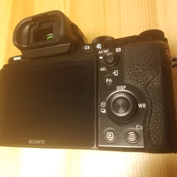 Rent Sony A7s: shoot in the dark!