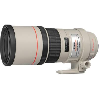 Canon  300mm f 4 0l