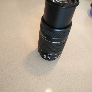 Rent Canon EF-S 55-250mm F/4-5.6 IS STM Telephoto Zoom Lens