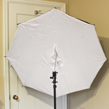 "Rent 42"" softbox umbrella"