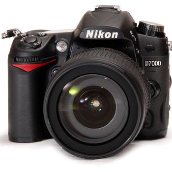 Rent Nikon D7000 W/ Lenses
