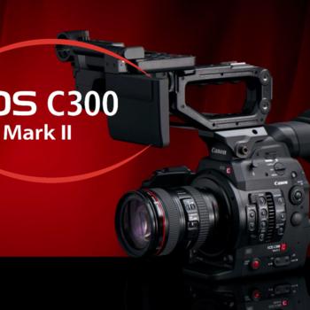 Rent C300 Mark 2  / EF mount