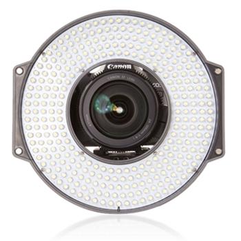 Rent R-300 LED Ring Light