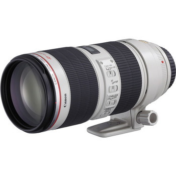 Rent Canon 70-200 f/2.8 IS II. Great lens for events, sports and wildlife photography.