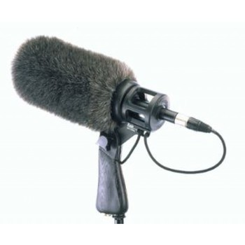 Rent Neumann KMR 81 i MT Shotgun mic and Boom Pole