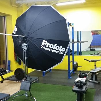 Rent Profoto 7 foot umbrella  with diffusion