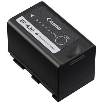 Rent Canon BPA-30 Battery