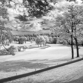 Rent Infrared Converted Sony A7R