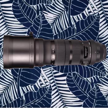 Rent Sigma 120-300mm f/2.8 DG OS HSM Sports