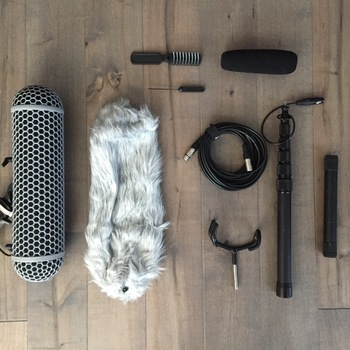 Rent Rode Audio NtG3 Boom kit w/ blimp