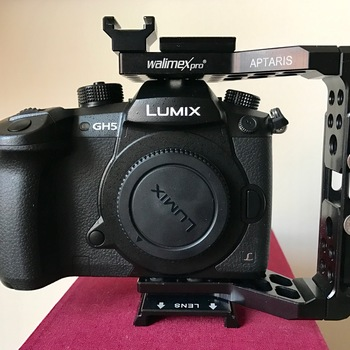 Rent Panasonic GH5 Basic Kit (with cage)