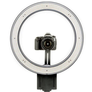 "Rent Angler Circo Dimmable LED Ring Light 19"" Beauty Dish +Stand"