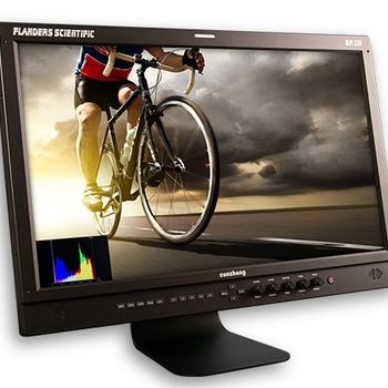 "Rent Flanders BM210 21.5"" Monitor"