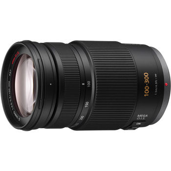 Rent Panasonic Lumix G Vario 100-300mm F/4.0-5.6 OIS Lens