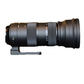 Rent Sigma 150-600mm Sport for Canon mount