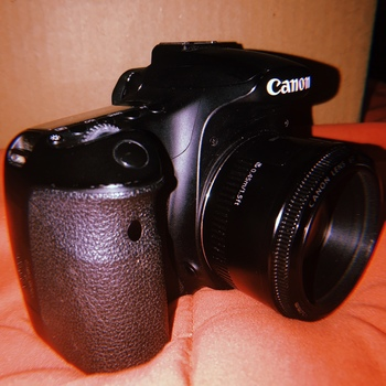 Rent Canon 60D with 50mm Lens
