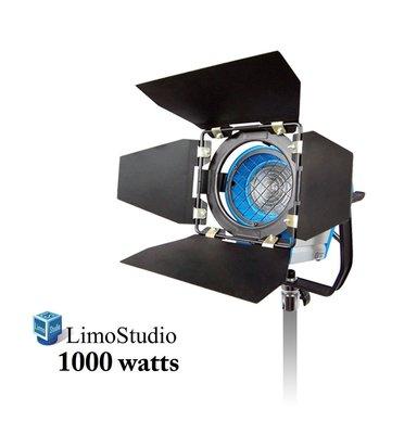 Rent A Limo Studio 1000 Watt Photography Photo Video Studio Light