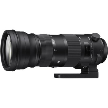 Rent Sigma 150-600mm f/5-6.3 DG OS HSM