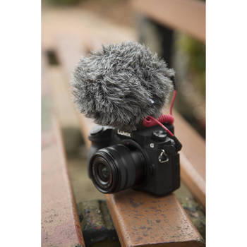 Rent RODE On- Camera Condensor Mic
