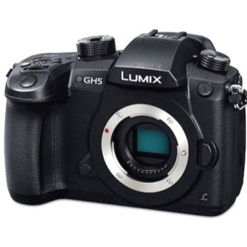 Rent Panasonic Lumix GH5 Body Only