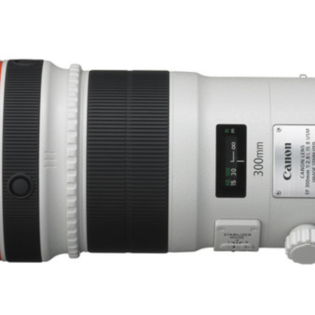 Rent EF 300mm f/2.8L IS  USM PLUS 1.4X Teleconverter