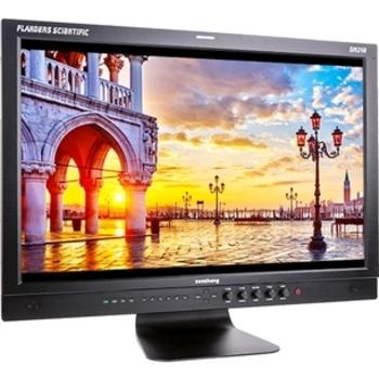 Rent FSI 24in Monitor DM240