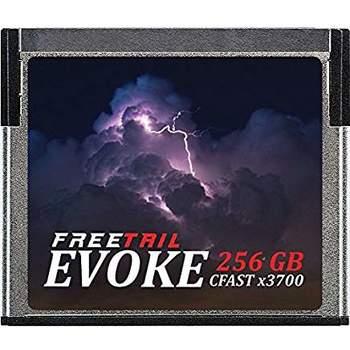 Rent cfast 2.0 256gb x2 cards