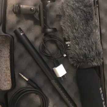 Rent Best Rode Mic for Video Period.  Comes with all the extras.