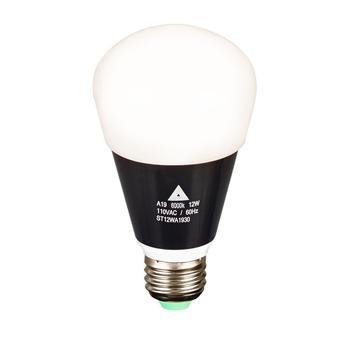 Rent Quasar 12W Practical Bulb 6000K