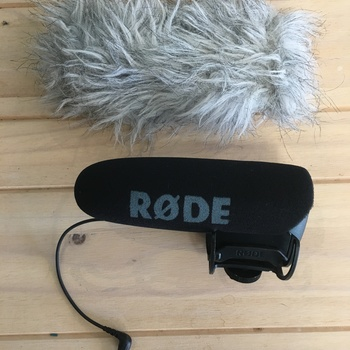 Rent Rode VideoMic Pro with dead cat