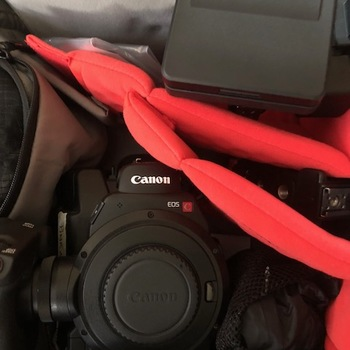 Rent Canon C300ii with or without Canon Lenses