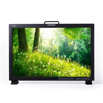 "Rent 24"" directors monitor with dual-split video display and battery power options"