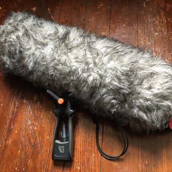 Rent Rycote Blimp Windshield + Dead Cat + Rain Protector