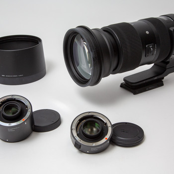 Rent Sigma 60-600mm f/4.5-6.3 DG OS HSM Sports Lens for Canon EF mount