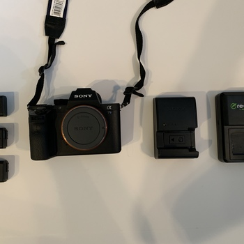 Rent Sony A7S II camera body