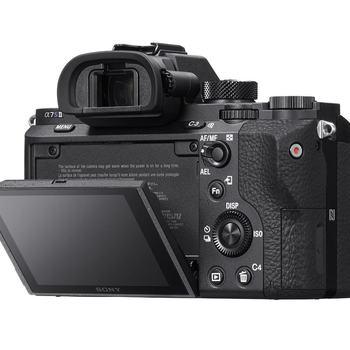 Rent Perfect low light camera!!