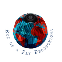 Eye Of A Fly Productions Avatar