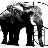 Elephant House Productions Avatar