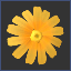head-collectable-yellow_daisy.png.7c3b5440678992b0d5190be9a7b213d6.png