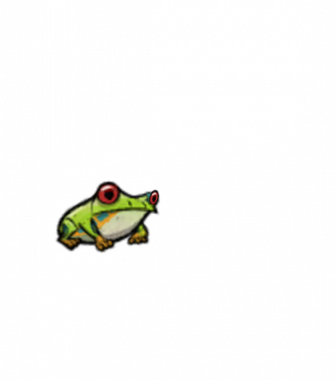 frog_treefrog_water_side.thumb.png.02cc4b1cbcac4853eefe61977b71e40e.png