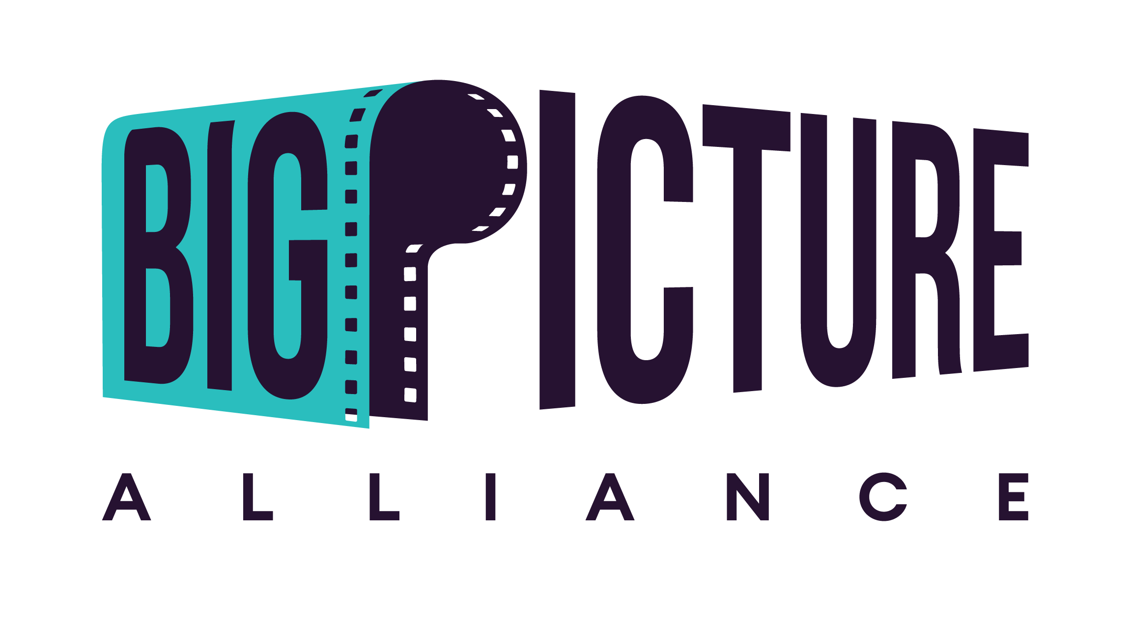 Big Picture Alliance logo