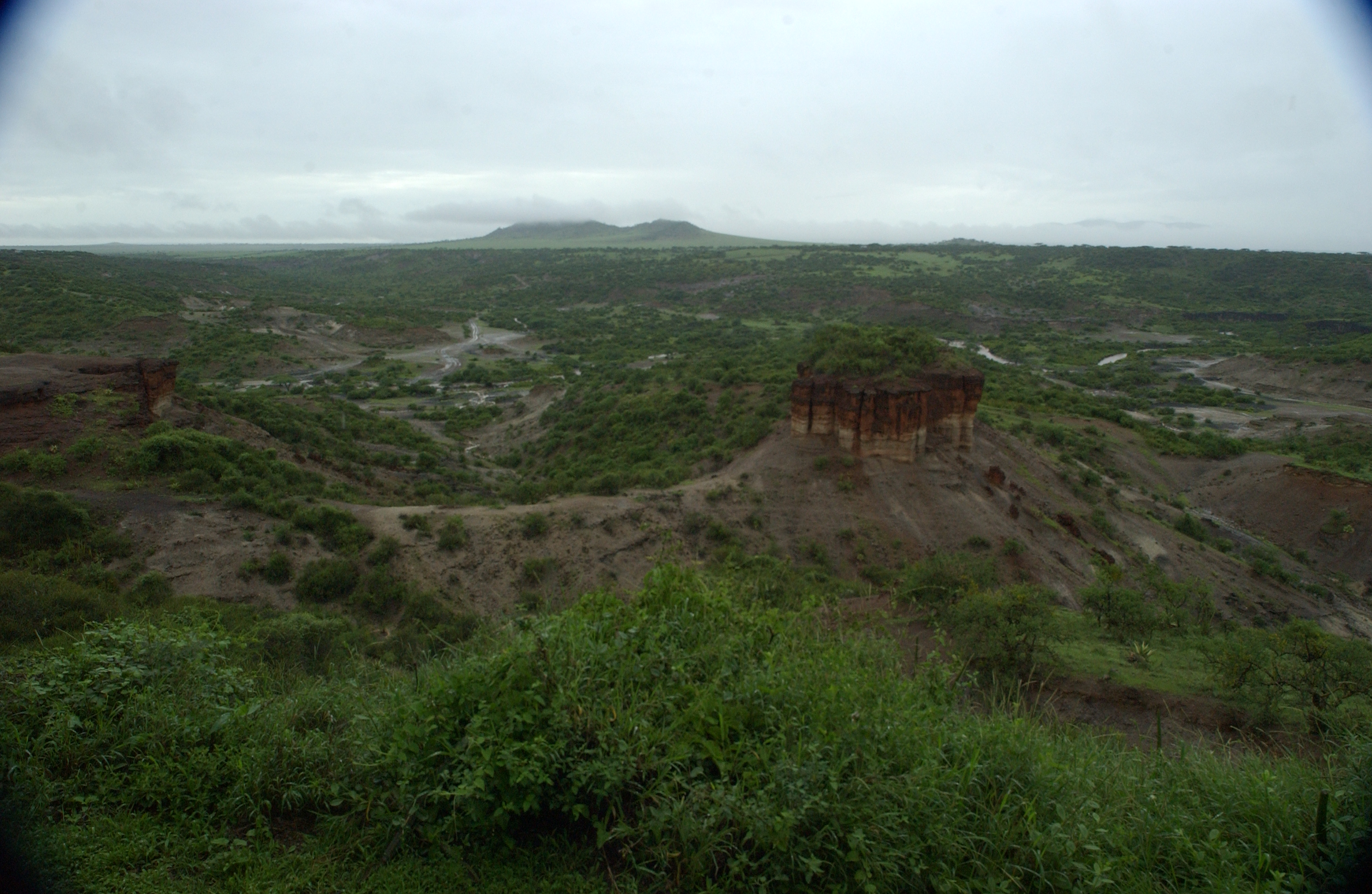 From the rim, Olduvai Gorge, scene of many major discoveries related to the origins of mankind, including the 3.6 million-year-old Laetoli fossilized footprints.  Ngorongoro Conservation Area, Tanzania, Africa.  December 2006.