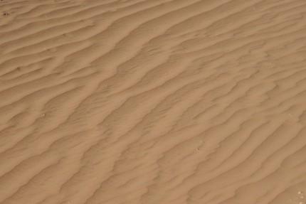 Sand scupture; Wadi Rum, Jordan. December 2008.