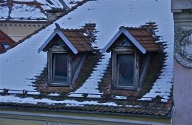 Dormers, dove; winter sunrise; Ljubljana, Slovenia. January 2015.