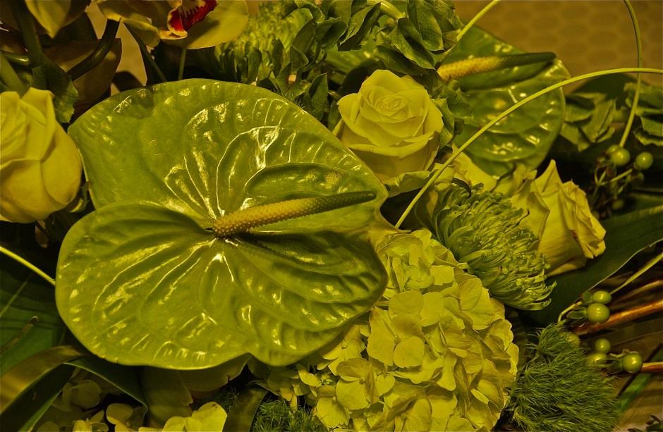 Composition in green; Philadelphia Flower Show; Pennsylvania Horticultural Society; Philadelphia, Pennsylvania, USA. February 2015.