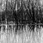 """River"" Konstantinos Psimaris, Basic Photography Spring 2000"