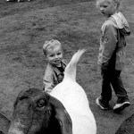 """Kids at the Zoo"" Ebony Pridgen, Basic Photography Spring 2005"
