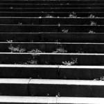 """Museum Detail"" KellyAnn Quinn, Basic Photography Spring 2001"